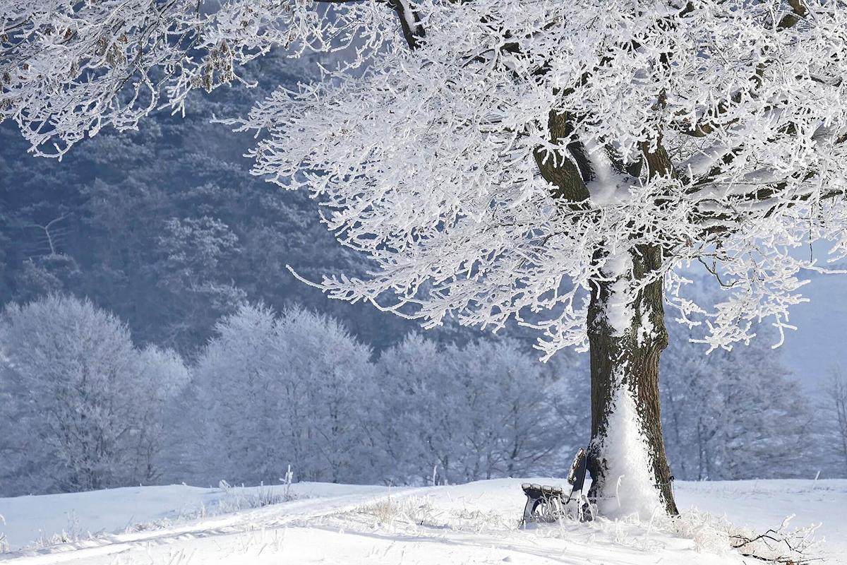 まずは雪の日の光を知って露出補正をしましょう!