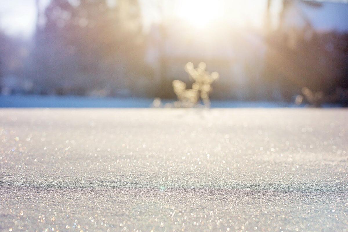 晴れの日はぜひ逆光できらきら反射する雪を撮影