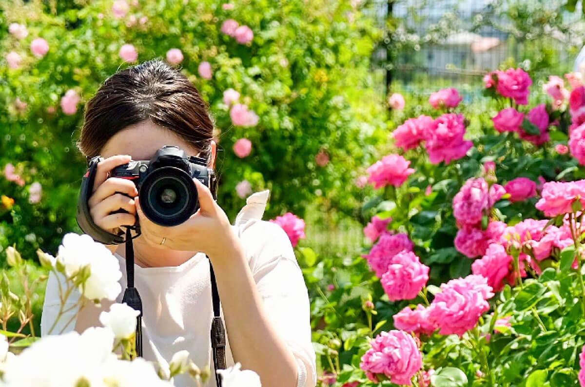 お気に入りのカメラを見つけて風景撮影を楽しもう!