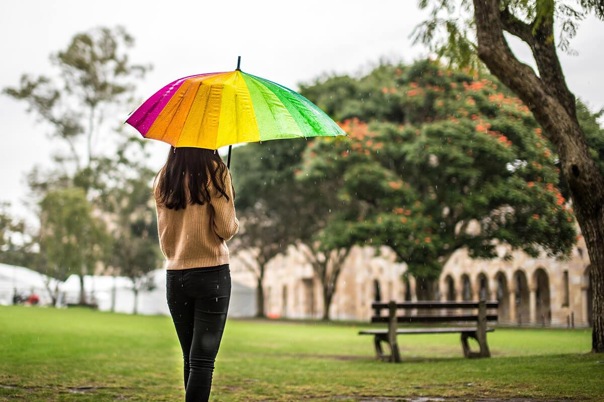 雨の日は傘を意識して撮る